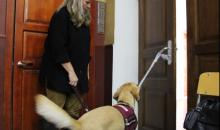 хатагтай Линда Болл болон түүний хөгжлийн бэрхшээлтэй иргэдэд туслагч нохой Виктори нар